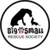 Big and Small Rescue Society